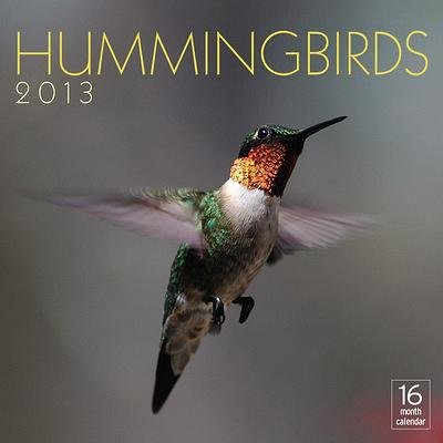 (12x12) Hummingbirds - 16-Month 2013 Calendar