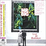 Mr Big Live at Budokan