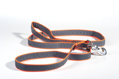 Petflect Reflective Dog Leash