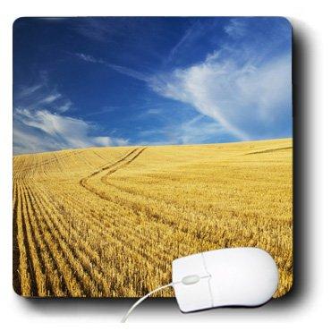 Danita Delimont - Farms - Farm Fields, Harvest Wheat, Palouse, Washington, USA - US48 TEG0425 - Terry Eggers - MousePad (mp_148727_1)