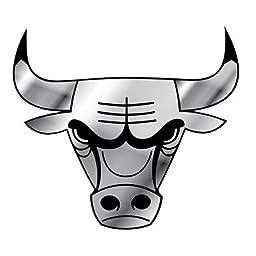 NBA Chicago Bulls Chrome Auto Emblem by Football Fanatics