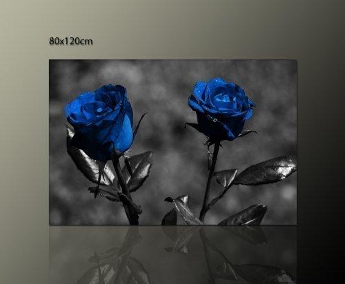 Blumenbild Rosen Wandbild auf echter Leinwand gerahmt (blue roses 80x120cm) Rosenbild Bilder fertig gerahmt auf Keilrahmen xxl. Kunstdruck auf Leinwand. Günstig inkl Rahmung