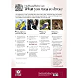 Health & Safety Law Poster Notice - (595 x 415 mm) HSE Poster - make everyone aware of risks and procedures