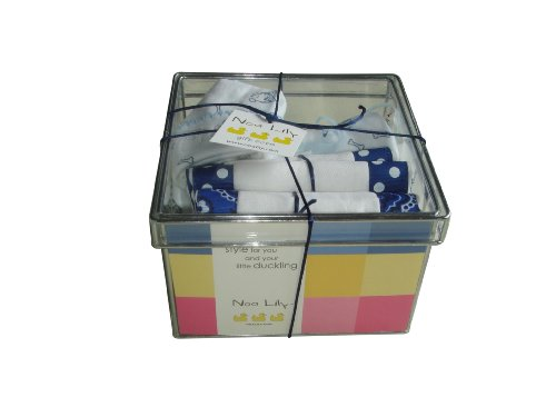 Noa Lily Gift Basket, Fido, Small