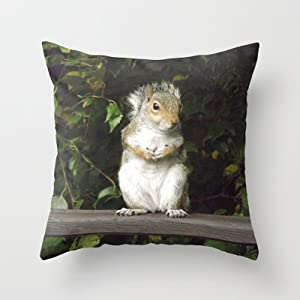 Amazon.com - Society6 - A Cute Squirrel Throw Pillow by JacquelineTurtonDesigns