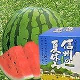 JA全農長野 南原ファームスイカ-信州の夏休み-匠- 贈答用大玉(約9-13kg)