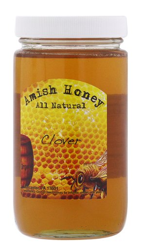 100% Natural Domestic Clover Honey - Made in USA (Lancaster, PA) 1lb - *Amish Honey*