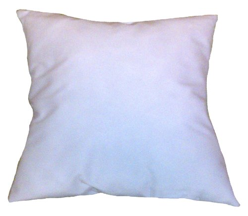 24x32 Pillow Insert Form (32 X 24 Pillow Insert compare prices)