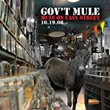 Mule on Easy Street ~ Gov't Mule
