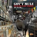 Mule on Easy Street ~ Gov't Mule
