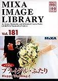 MIXA IMAGE LIBRARY Vol.181 ブライダル・ふたり