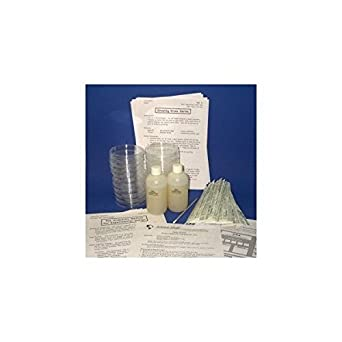 Petri Dishes with Agar and Swabs - Science Fair Project Kit