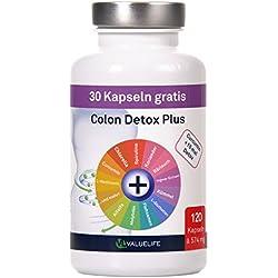 Colon Detox Plus: 120 Kapseln für Darmreinigung, Darmsanierung, Entgiftung und Entschlackung - 15 mal Detoxpower + Curcumin - 120 Kapseln (1 x 68g)