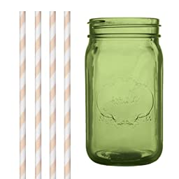 Dress My Cupcake DMC35058 Green Vintage Jardin Mason Jar with Ivory Striped Straws, 32-Ounce