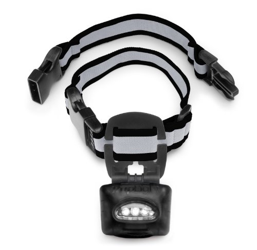 PupLight2 Twice as Bright with Reflective Dog Safety Collar, Black