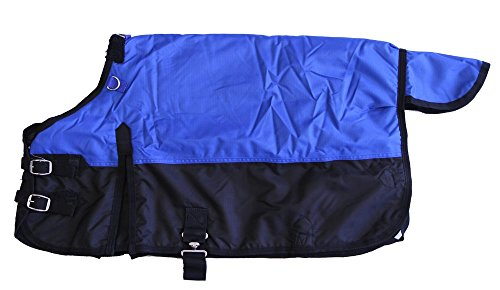 "Miniature Horse 600D Light Weight Water Proof Blanket Royal Blue, 38"" front-771761"