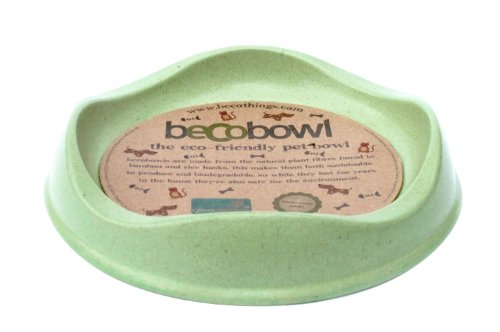 Becothings Becobowl pour Chat Vert