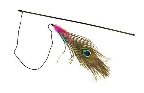 freerun-cat-catcher-teaser-wand-interactive-toy-with-peacock-feather-for-cat-and-kitten