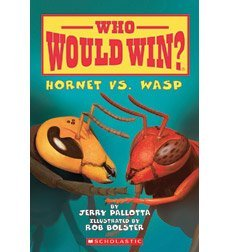who-would-win-hornet-vs-wasp