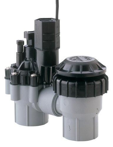 Rain Bird 1-Inch Professional Grade Sprinkler System Anti-Siphon Valve DAS/ASVF-100