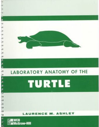 lab-anatomy-of-the-turtle-by-laurence-m-ashley-1962-01-01