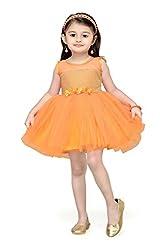 Aarika Girl's Self Design Net Fabric Party Wear Frock (FK-1000-ORANGE_32_9-10 Years)