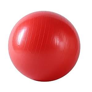 Sunny Health&Fitness 057 Anti-Burst Gym Ball, 75-Centimeter