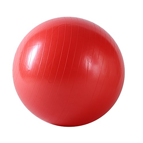 Sunny Health & Fitness Anti-Burst Gym Ball, 55 CM