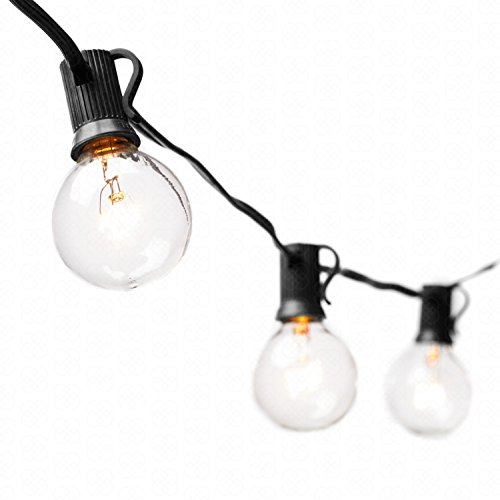 G40 Globe String Lights with 25 Clear Bulbs by Deneve® - UL Listed Commercial Quality String Lights Perfect for Indoor / Outdoor Use - 3-YEAR 100% Satisfaction Guarantee on Light String! (Black)
