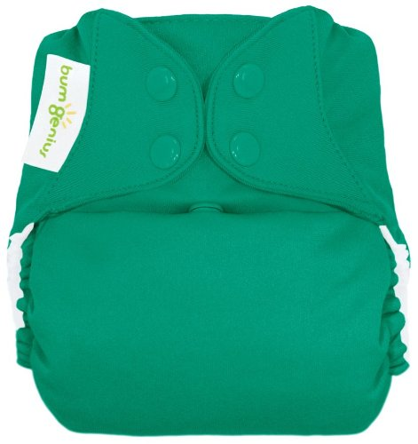 Bumgenius Freetime All In One Cloth Diaper - Snap - Hummingbird - One Size