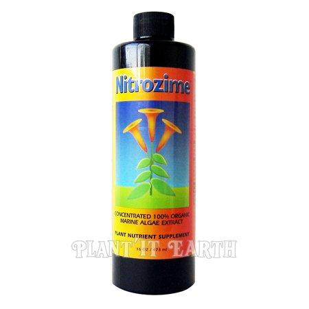 Nitrozime 8 oz. - Buy Nitrozime 8 oz. - Purchase Nitrozime 8 oz. (Nitrozime, Home & Garden,Categories,Patio Lawn & Garden,Plants & Planting,Soils Fertilizers & Mulches,Fertilizers,Liquid)