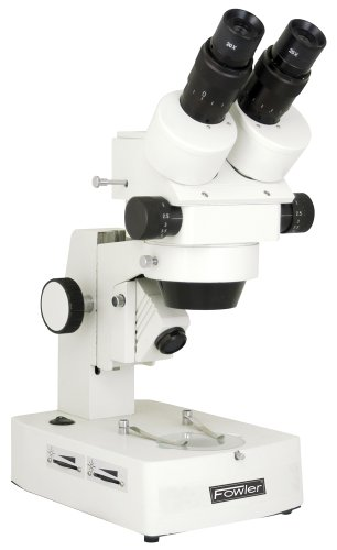 Field Of View Microscope