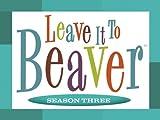 Beaver, The Model
