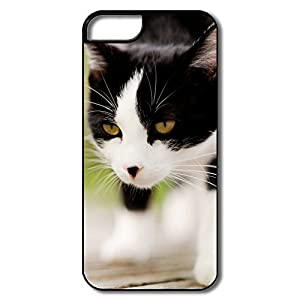 Amazon.com: Cute Cool Cat IPhone 5/5s IPhone 5 5s Case For ...