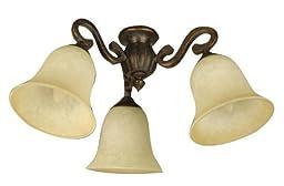 Craftmade LK50CFL-PR 3 Light Universal Fan Light Kit with Antique Scavo Glass, Peruvian Bronze