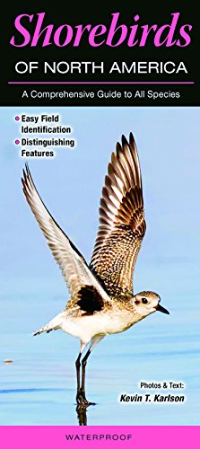 Shorebirds of North America: A Comprehensive Guide to All Species