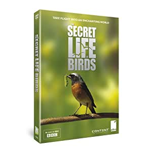Secret Life of Birds [DVD]