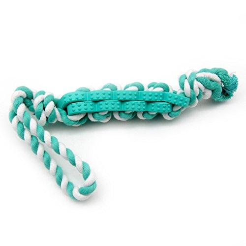 Artikelbild: SymbolLife Tau Hundespielzeug kauen Hundespielzeug Wurfspielzeug Kauspielzeug Interaktives Spielzeug Baumwoll-Seil mit Naturgummi verflochten,48,3cm, Blau