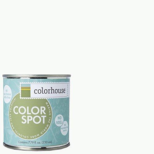 inspired-eggshell-interior-colorspot-paint-sample-imagine-01-8-oz