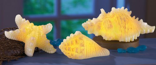 Led Seashell & Starfish Candles - Set Of 3
