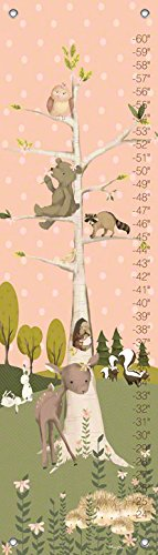 Oopsy Daisy Growth Charts Woodland Pals Girl by Meghann O'Hara, 12 by 42-Inch