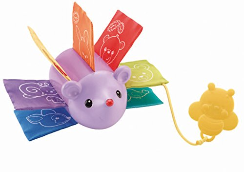 Fisher-Price Crinkle Clutch Critter