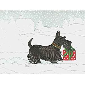 Scottish terrier boxed christmas cards boxed christmas cards scottish terrier boxed christmas cards m4hsunfo