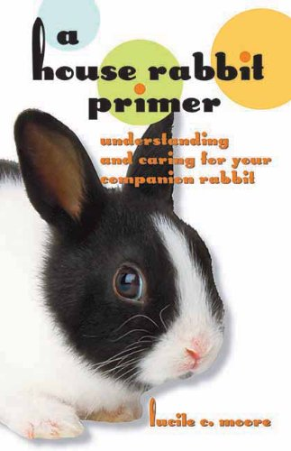 A House Rabbit Primer: Understanding and Caring for Your Companion Rabbit