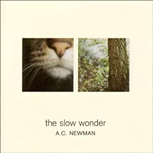 Slow Wonder