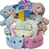 Double The Fun Twin New Baby Gift Basket - Pink Girls or Blue Boys
