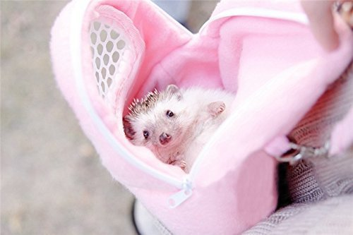 Yosoo 1 PCS Portable White Mesh African Hedgehog Hamster Breathable Pet dog Carrier Bags Handbags Puppy Cat Travel Backpack (M, White Mesh – Pink)