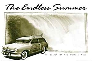 (24x36) The Endless Summer Movie (Woody) Poster Print