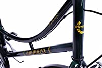 "Ammaco Traditional Heritage Dutch Style Ladies Bike Racing Green 16"" Frame by AMMACO"