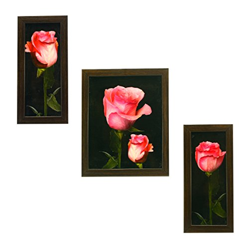 3 PIECE SET OF FRAMED WALL HANGING ART PRINT - B01C8SA8YY